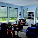 Elegant interior shades showcase outdoor vista.