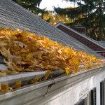 Reverse Curve Systems Allow Debris in Gutters