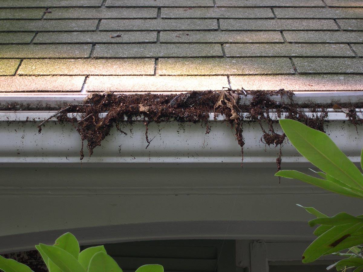Reverse Curve Systems Allow Debris In Gutters All About